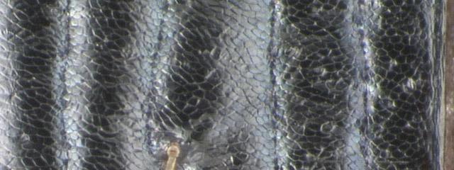 Specimen DNA3252, Alberta