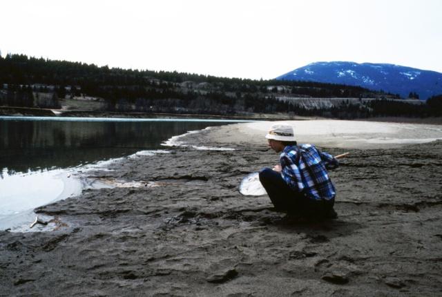 Wayne Maddison along Kootenay River near Bull River, 1982