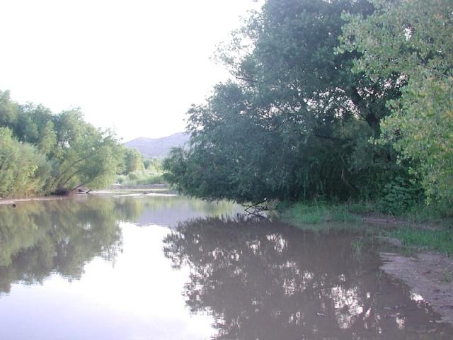 Gila River at Billings Vista, NM
