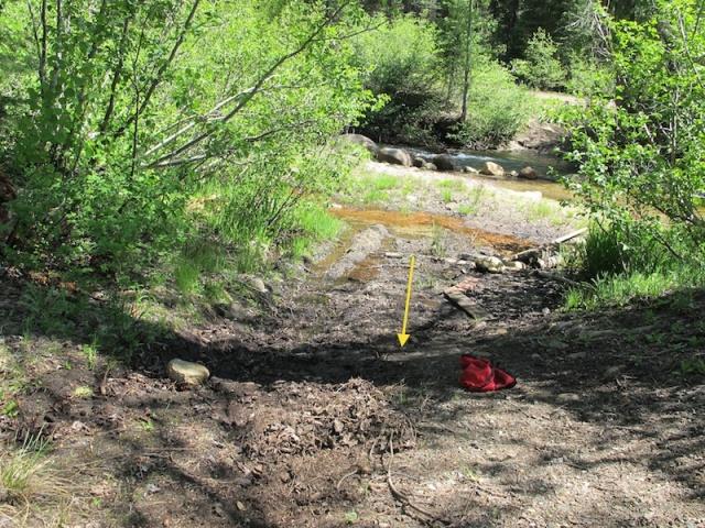 Strawberry Creek at Sciots Camp, El Dorado Co., California