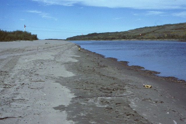 North Saskatchewan River at Paynton Ferry, on a better day (8 September 1982). This is not where the body was found.