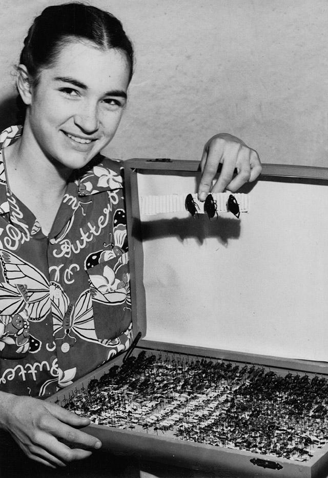 Hilary Hacker 1951